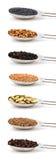 Örtar och kryddor som in mätas, belägger med metall matskedar Royaltyfri Bild
