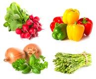 örtar ställde in grönsaker vita Arkivfoton