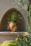 Örtartade växter i blomkruka Royaltyfri Fotografi