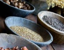 Örter och kryddor i bunkar Royaltyfri Foto