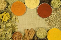Örter och kryddor på hessiansbakgrund Royaltyfri Foto