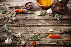 Örter och kryddor på träbakgrund Royaltyfri Bild