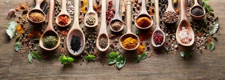 Örter och kryddor på träbräde Royaltyfri Foto