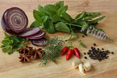 Örter och kryddor - persilja, lök som är kylig, anis, vitlök Fotografering för Bildbyråer