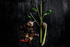 Örter och kryddor runt om tom skärbräda på mörk stenbackgr Arkivfoton