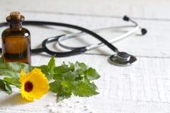 Örter och stetoskop för alternativ medicin royaltyfri foto