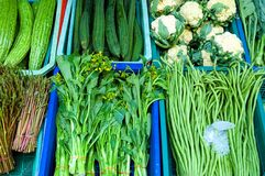 örtgrönsaker Royaltyfri Fotografi