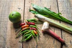 Örtkryddor för thailändsk kryddig soppa Arkivfoton
