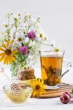 Örtte med örter och blommor i ett glass te lägger in med honung Bukett av blommor Arkivbilder