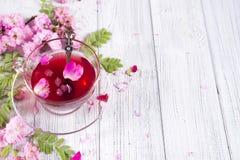 Örtteingredienser med blommor och kopp te royaltyfria foton
