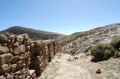 Öslinga, sjö Titicaca Royaltyfria Bilder