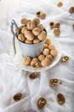Ösregna mycket av valnötter med en nötknäppare på en vit bakgrund Royaltyfri Foto