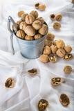 Ösregna mycket av valnötter med en nötknäppare på en vit bakgrund Royaltyfri Bild