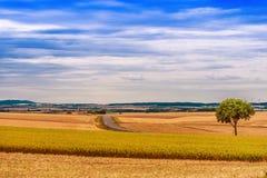 Österreich-Landschafts-Landschaft Stockfoto