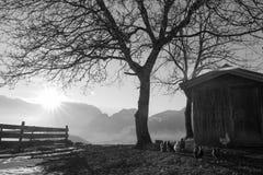 Österreich, Tirol Stockbilder