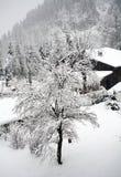 Österreich-Winterszene Lizenzfreie Stockfotos