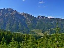 Österreichische Alpe-Ansicht des Dachstein Stockfotografie