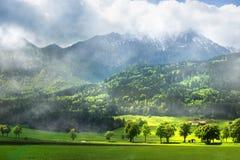 Österreichische Alpen Lizenzfreie Stockbilder