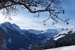 Österreichische Alpen. Saalbach Lizenzfreie Stockfotografie