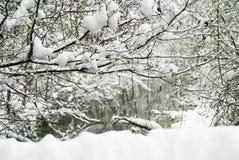 Österreichischer Winterlandschaftsfluß Lizenzfreie Stockbilder