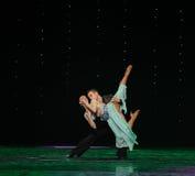 Österreichs Tanz-d der gegenseitigen Kapitalbeteiligung von zwei Unternehmen und des Drehenflamingos Welttanz Lizenzfreie Stockbilder