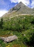 Österrike berg arkivbild