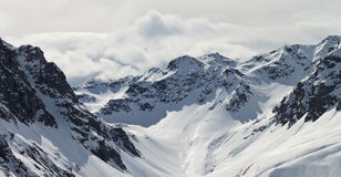 Österrike bergsilvretta Arkivbild