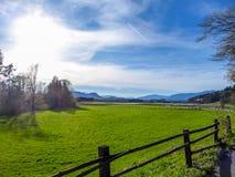 Österrike - en grön äng på en solig dag royaltyfria foton
