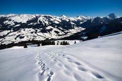 Österrike - fotvandra i fjällängarna för Kitzbà ¼heler Arkivfoto