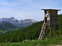 Österrike-framtidsutsikt av alpsna Arkivbild