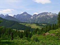 Österrike-framtidsutsikt av alpsna Arkivfoto