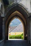 Österrike grein Arkivbild