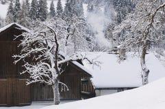 Österrike Salzburger land, vinterlandskap Royaltyfria Foton