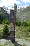 Österrike Tirol, Kaunertal Royaltyfri Foto