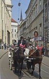 Österrike Wien Royaltyfria Bilder