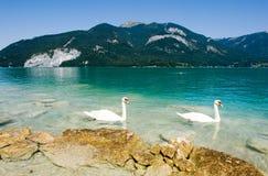 Österrike wolfgangsee Arkivfoton