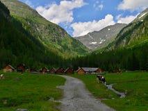 Österrikiska alps-Hansalhutte Royaltyfri Bild