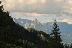 Österrikisk bergskedja förbi träd Royaltyfri Foto