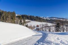 Österrikisk vinter Arkivbild
