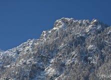 Österrikiska alps i vinter Royaltyfria Bilder