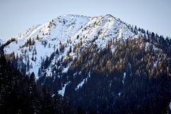 Österrikiska alps i vinter Royaltyfria Foton