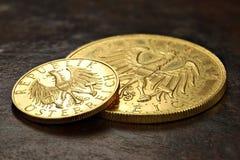 Österrikiska guld- mynt Royaltyfria Foton