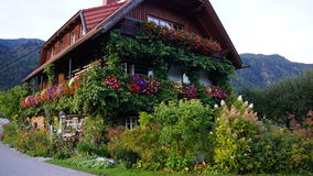Österrikiskt hus som fördjupas i grönskan på bakgrunden av fjällängarna Arkivfoton