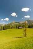 österrikiskt liggandeberg Arkivbilder