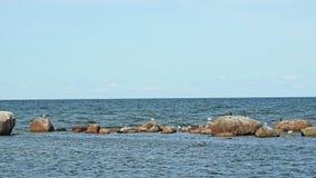 Östersjön landskapsikt nära Tallinn arkivfoto