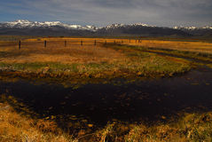 Östliche Sierra Lizenzfreies Stockfoto