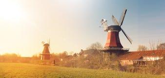 Östlig Frisian maler arkivbilder