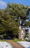 ÖSTLIG GRINSTEAD, VÄSTRA SUSSEX/UK - FEBRUARI 27: St Swithun ` s Chur Royaltyfria Bilder