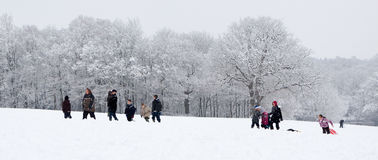ÖSTLIG GRINSTEAD, VÄSTRA SUSSEX/UK - JANUARI 6: Vinterplats i Eas Royaltyfri Foto