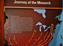 Östlig ställning för fjäril för monarker för kustvirginia djurliv arkivbilder